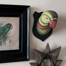 quirky home decor inspired by birds