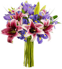 stargazer bouquet benchmark bouquets stargazer lilies and iris with