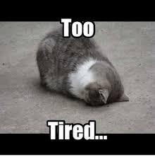 Too Tired Meme - too tired meme on me me