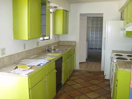 best lime green kitchen ideas including pictures hamipara com