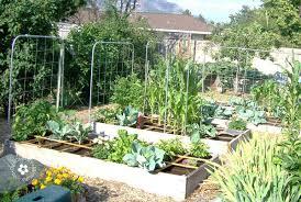 build a garden trellis going buggy diy garden trellis onecreativemommy com