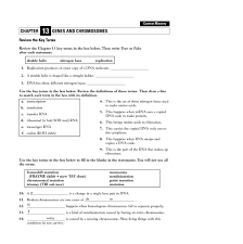 chapter 11 dna and genes worksheet answers free worksheets library