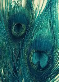 best 25 teal blue ideas on pinterest shades of teal teal light