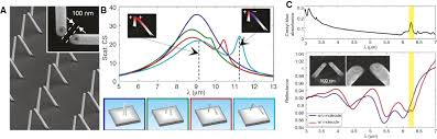periodic array based substrates for surface enhanced infrared