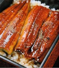 cuisiner des anguilles unagi kamameshi anguilles grillées sur un lit de riz king