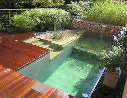 Small Backyard Pool by Backyard Pool Designs For Small Yards 25 Best Ideas About Small