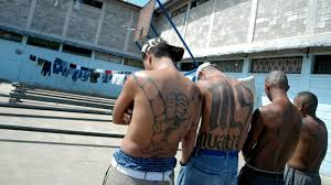 Los Angeles Gangs Map Territory by Ms 13 Gang Members Trump Makes Ms 13 Gang Stronger Cnn