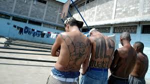 Gang Map Los Angeles by Ms 13 Gang Members Trump Makes Ms 13 Gang Stronger Cnn