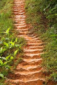 muddy and very slippery stairs in the madagascar jungle stock