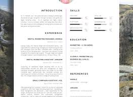 Amazing Resume Examples Great Resume Templates Legal Tags Resume Templates Controller