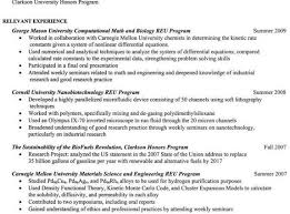 System Engineer Resume Sample by Engineer Resume Examples System Engineer Resume Sample Systems