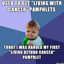 Funny Cancer Memes - fuck you lymphoma meme on imgur advice animals pinterest