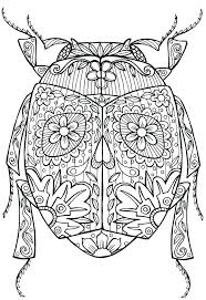 coloring pages insects bugs coloring pages of insects bug coloring page stink bug coloring page