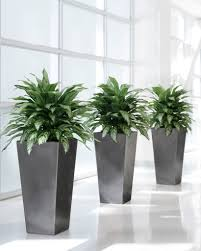 why artificial plantscaping is best for office and commercial