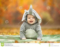 elephant costume for toddlers baby boy dressed in elephant costume in autumn royalty free stock