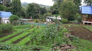 self sufficiency program to reach local autonomy
