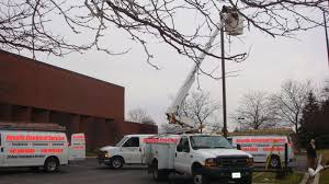 parking lot light repair near me roselle electric services inc chicago suburbs electricians parking
