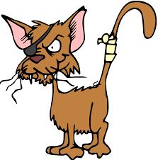 halloween clip art png clipart fighting cat