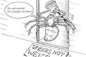 spider myths burke museum