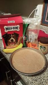 dog homemade cupcakes or cake peanut butter oatmeal egg