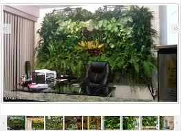 green living wall vertical gardens plant walls living walls