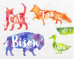 color and paint silhouettes of animal cat fox bison duck drawing color paint on