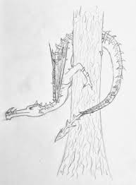 myths and legends origns of jack frost of dragons how