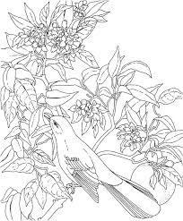 dead flower coloring page fresh day the dead coloring pages free free coloring pages download