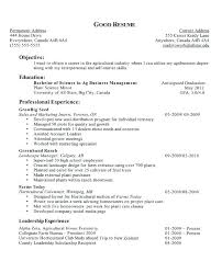 high resume objective sles good resume objective pros and cons profile vs sles for high