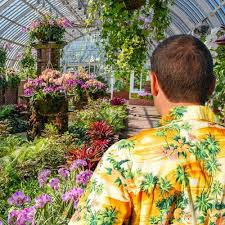 exhibits and events phipps conservatory and botanical gardens