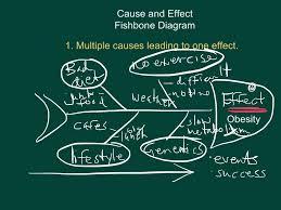Cause Effect Essay Format Human Resource Management Dissertation Pdf Quizlet