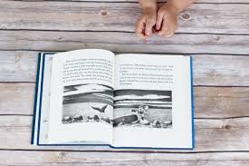 7 read aloud chapter book series to successfully introduce your