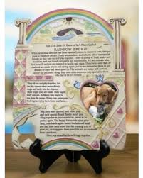 spectacular deal on remembrance plaque pet memorial with rainbow