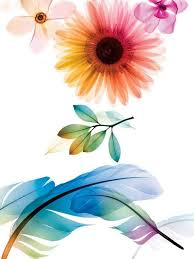 xray flowers flora and more ah pinterest flowers tattoo