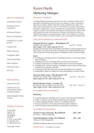 marketing manager resume sales manager cv exle free cv template sales management