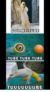 Tube Meme - got my tube tube tube tube tuuuuuuube meme on me me