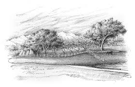 pen u0026 ink art illustrations drawings tucson az mark tucci