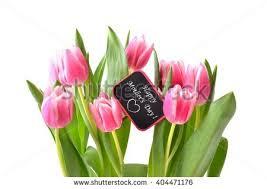 Flowers For Mum - spring flowers apple branch on white stock photo 394481140