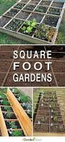 best 25 square foot gardening ideas on pinterest i square foot