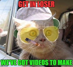 Make A Video Meme - everyone loves a good cat video show me what you got imgflip
