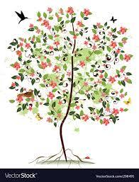apple blossom tree royalty free vector image vectorstock