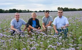 chambre d agriculture des cotes d armor la phacélie semée avant la moisson est en fleur journal paysan