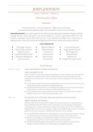 Ceo Resume Example 24 Award Winning Ceo Resume Templates Wisestep