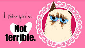 grumpy cat valentines 20 grumpy cat valentines day photo lol me