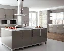 Gloss Kitchen Cabinet Doors High Gloss Kitchen Cabinets High Gloss Kitchen Cabinet Doors Uk
