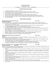 Resume Sle by Resume Sle Sle To Write A Resume For Store Manager In