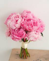 peony bouquet everything you need to about peonies for your wedding peony