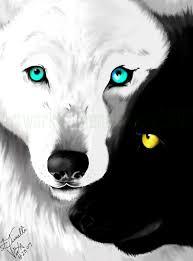 yin yang wolves by basurabin on deviantart