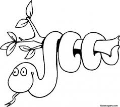 free print coloring pages jungle snake branch