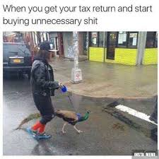 Peacock Meme - when you get your tax return